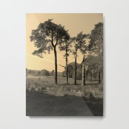 Old Lone Pine Sentinels. Metal Print