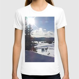 Two Horses in the Snow T-shirt