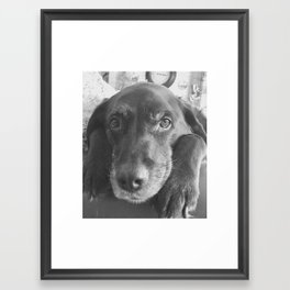 Louie...it's 3:17pm Framed Art Print