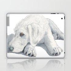 Labradoodle Pup Ginger Laptop & iPad Skin