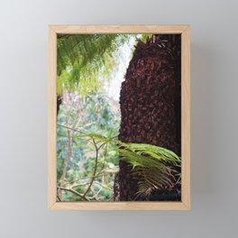 Fern Forest Framed Mini Art Print
