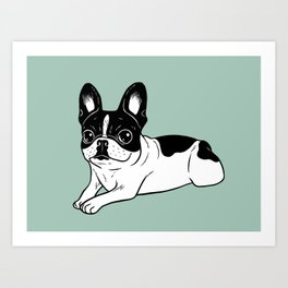 Double Hooded Pied Frenchie Art Print