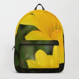Bright Yellow Gazania Flower Backpack
