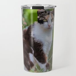 Are you meowing to me? Travel Mug