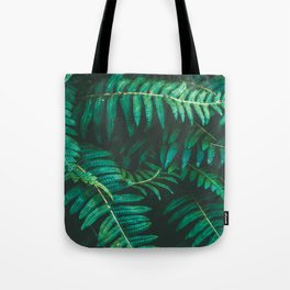 Ferns II Tote Bag
