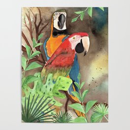 Parrot Couple with tropical leaves Watercolor Design Poster