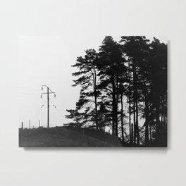 Land Metal Print
