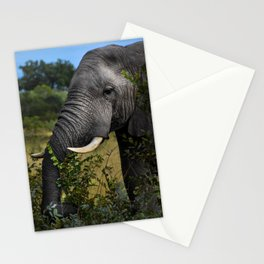 Elephant Early Morning Snack Stationery Cards