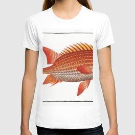 image-from-rawpixel-id-938792-jpeg T-shirt