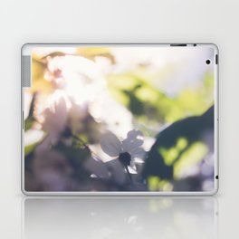 Contre-Jour Blooming Blossom Laptop & iPad Skin