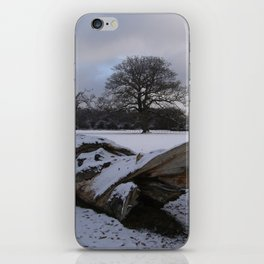 New Forest in the snow iPhone Skin