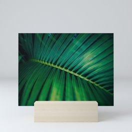 Green Leaf Palm Frond Photo Mini Art Print