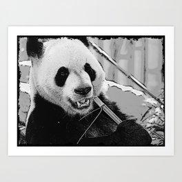 Panda Bear Munchies Art Print