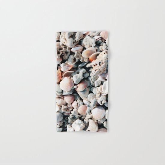 Seashells by yarsphotography