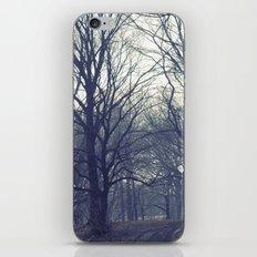 prospect park iPhone & iPod Skin