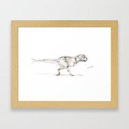 Carnotaurus   Framed Art Print