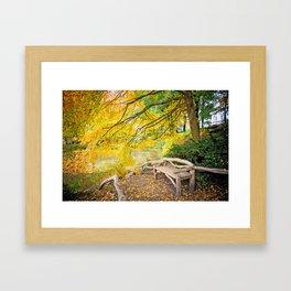 Autumn Bench Meadow Framed Art Print