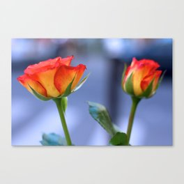 """""""Love planted a rose and the world turned sweet"""" Canvas Print"""