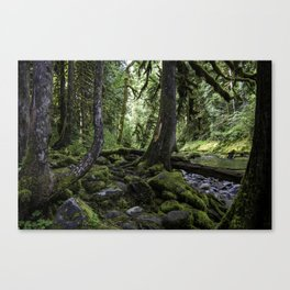 Green of the Forest Canvas Print