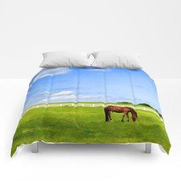 Summer Grazing Comforters