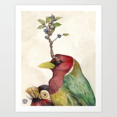 Barbet  Art Print