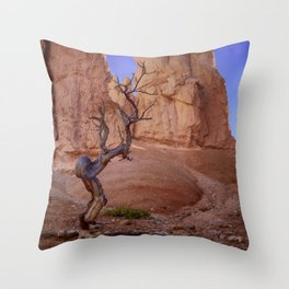 Tree in Bryce Canyon Throw Pillow