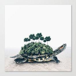Giant Turtle Canvas Print