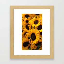 Pattern sun flowers Framed Art Print