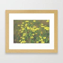 Hello Buttercup! Framed Art Print