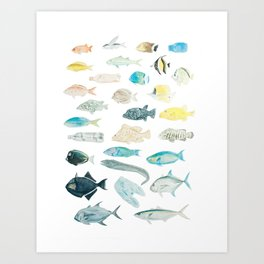 The Inhabitants of the Waters of Clipperton Atoll 1 Art Print