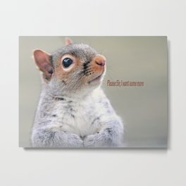 Oliver Twist Squirrel Metal Print