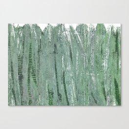 Gray-green Canvas Print