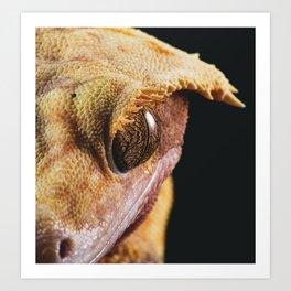 Crested gecko portrait print Art Print