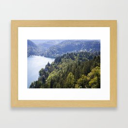 Slovenian Forrestation Framed Art Print