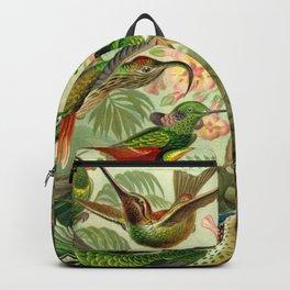 Ernst Haeckel Trochilidae 1904 Poster Backpack