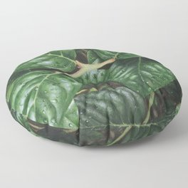 can you be-leaf- it Floor Pillow