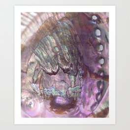 Shimmery Lavender Abalone Mother of Pearl Art Print