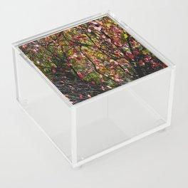 Nature's Tapestry Acrylic Box