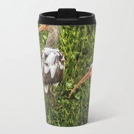 White Ibis - Adult and Juvenile Travel Mug