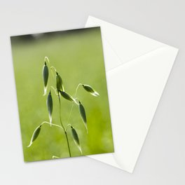 one ear of oats Stationery Cards