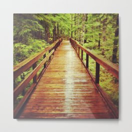 Trail of Two Forests Metal Print