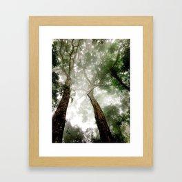Jungle in the mist Framed Art Print