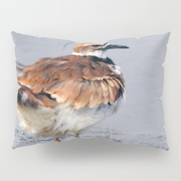 Juvenile Killdeer Pillow Sham