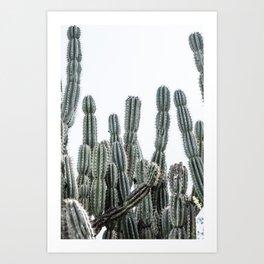 Minimalist Cactus Art Print