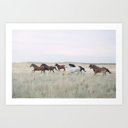 Colorado dreams Art Print