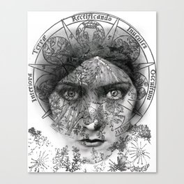 The Eyes of Alchemy Canvas Print