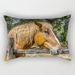 Brown Horse Rectangular Pillow
