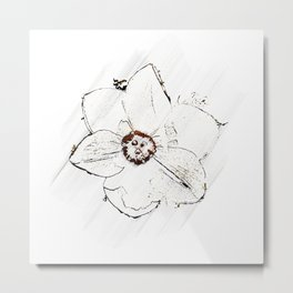 Minimal Nature - Daffodil - Color  Metal Print