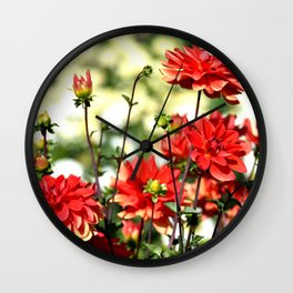HAPPY BRIGHT DAHLIAS IN THE AFTERNOON SUNSHINE Wall Clock