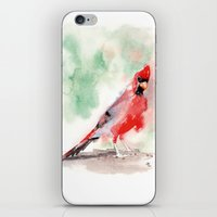 cardinal iPhone & iPod Skins featuring CARDINAL by LILIOM GRAPHICS